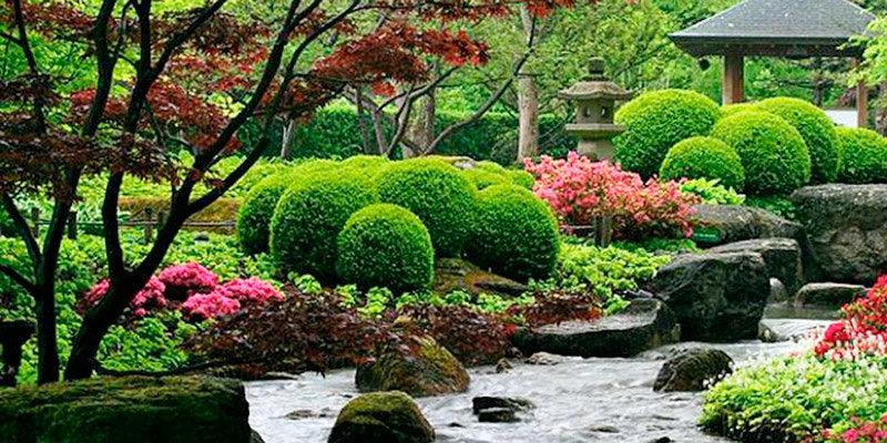 Обустройство огорода по фен-шуй: посадка растений и зонирование